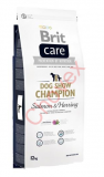 BRIT Care dog Show Champion Salmon & Herring 12 kg
